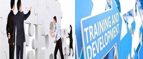 Pengertian Pelatihan dan Pengembangan