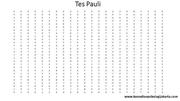 Tes Pauli