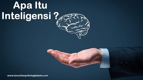 Apa Itu Inteligensi