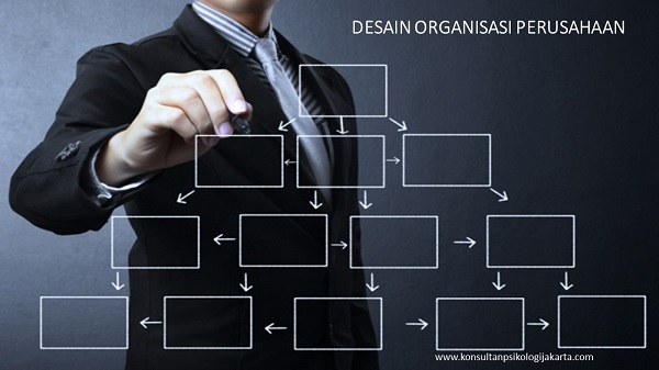 desain organisasi perusahaan