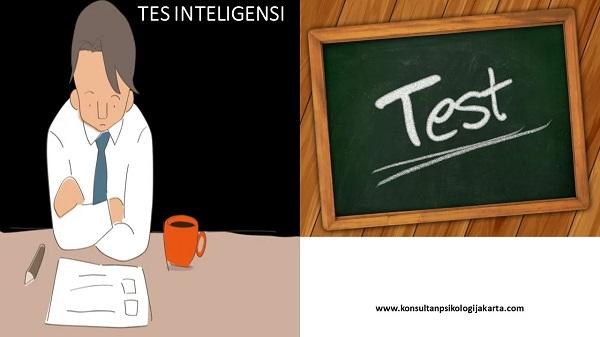 TES INTELIGENSI