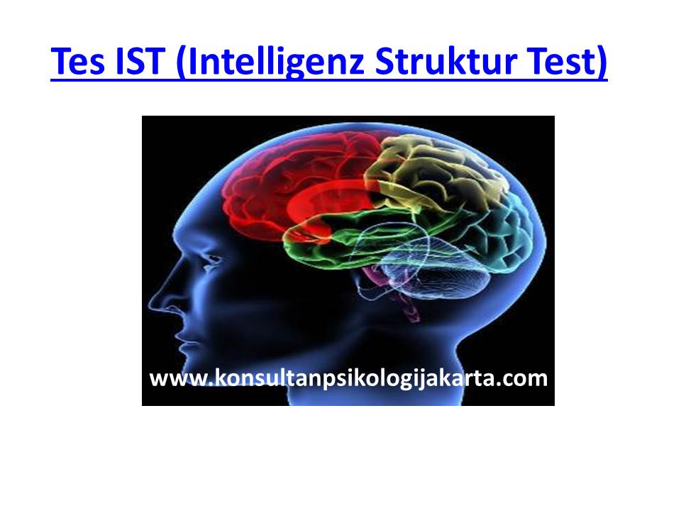 Tes IST (Intelligenz Struktur Test)